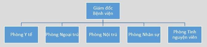 Mô hình Sơ đồ Tổ chức theo Khách hàng