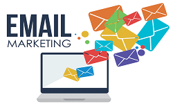Cẩm Nang Email Marketing