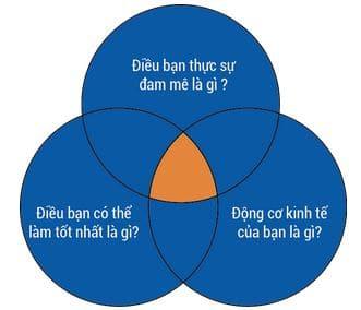 3 vòng tròn con nhím