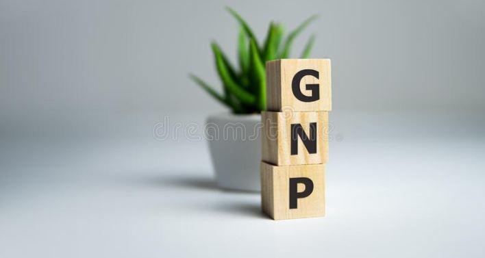 GNP là gì