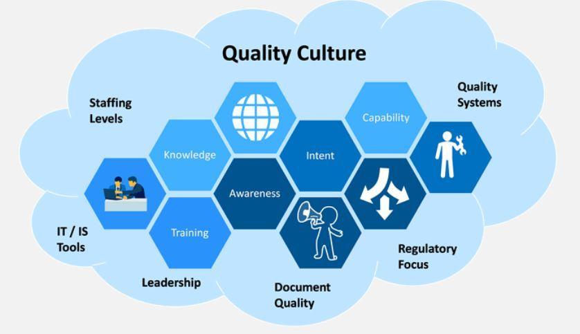 Văn hóa chất lượng là gì? Các bước xây dựng văn hóa chất lượng